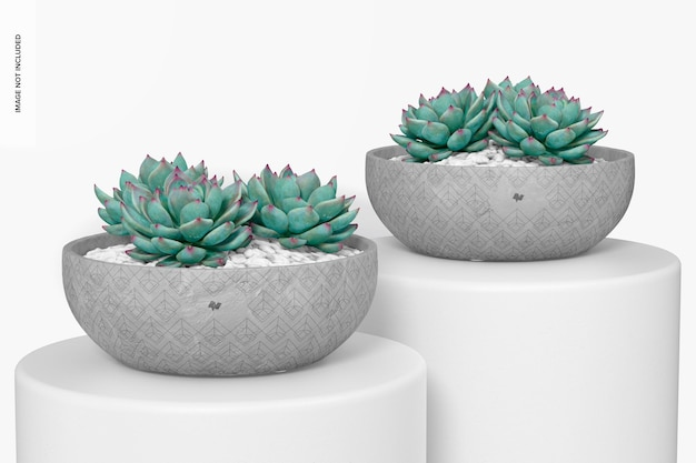 Maquete de potes de cimento redondo plano