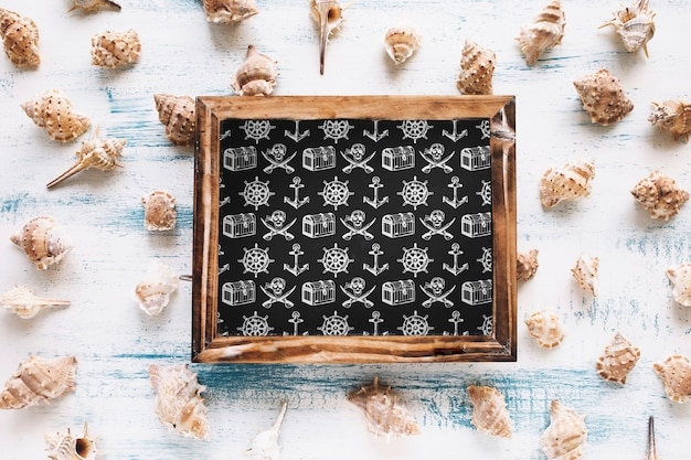 Maquete de verão com ardósia e moluscos