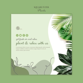 Modelo de folheto de plantas