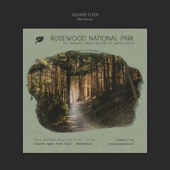 Modelo de folheto - parque nacional de jacarandá com natureza e árvores