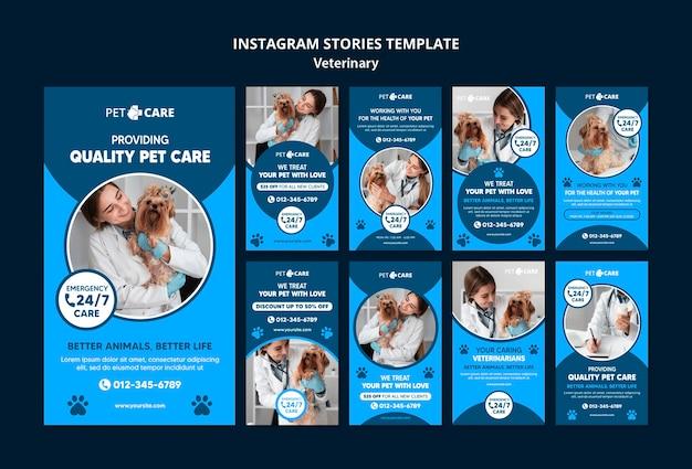Modelo de histórias de mídia social de cuidados com animais de estimação de qualidade