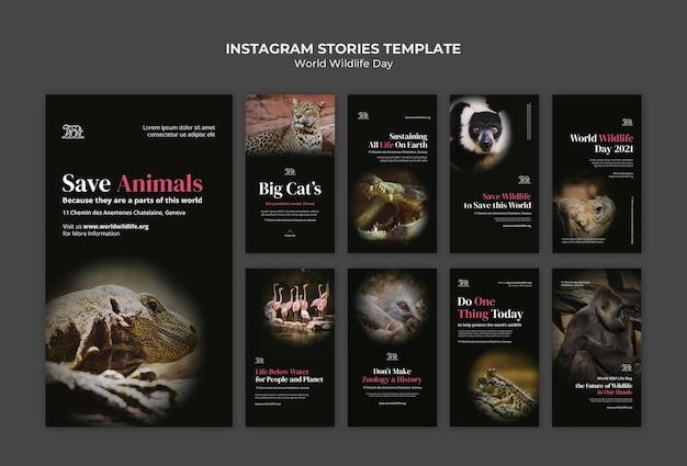 Modelo de histórias de mídia social do dia mundial da vida selvagem