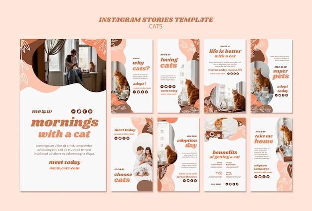 Modelo de histórias do instagram de gatos