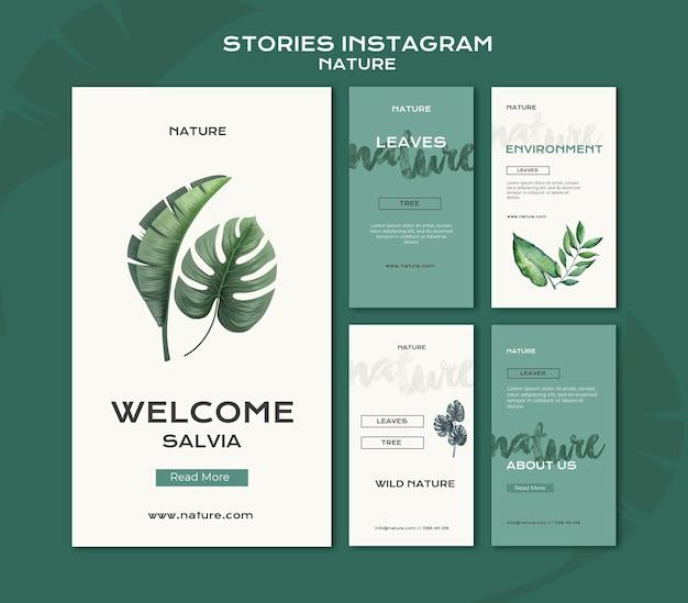Modelo de histórias do instagram de natureza selvagem