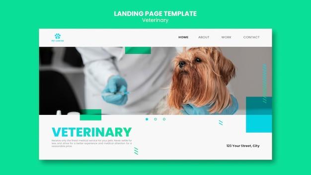 Modelo de página de destino de anúncio veterinário