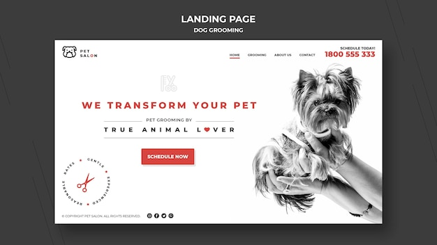 Modelo de página de destino para empresa de cuidados com animais de estimação