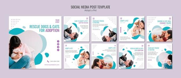 Modelo de postagem de mídia social com adoção de animais de estimação