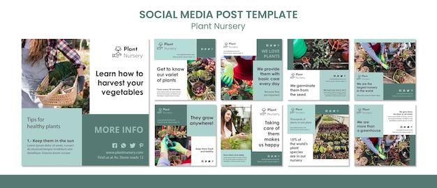Modelo de postagem de mídia social em viveiro de plantas
