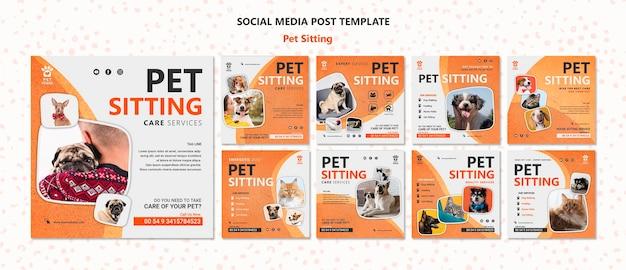 Modelo de postagem de mídia social para conceito de pet sitting