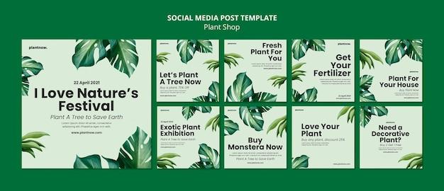 Modelo de postagem de mídia social para loja de plantas