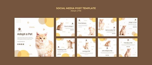 Modelo de postagem de mídias sociais de adoção de animais de estimação