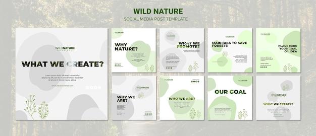 Modelo de postagem - mídia social da natureza selvagem