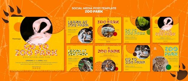 Modelo de postagens de mídia social do zoo park