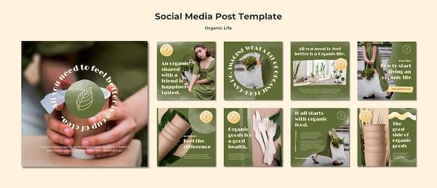 Modelo de postagens do instagram de vida orgânica