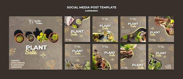 Modelo de postagens no instagram de jardinagem com foto