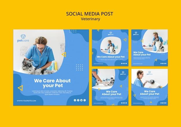 Modelo de publicação - mídia social veterinária de mulher e cachorro