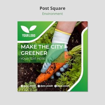 Modelo de quadrado de plantio de cenouras orgânicas