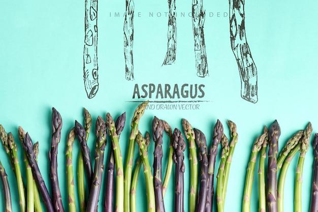 Moldura de canto de lanças de aspargos orgânicos crus cultivados em casa para cozinhar alimentos saudáveis de dieta vegetariana em um espaço de cópia de superfície azul conceito vegano vista superior