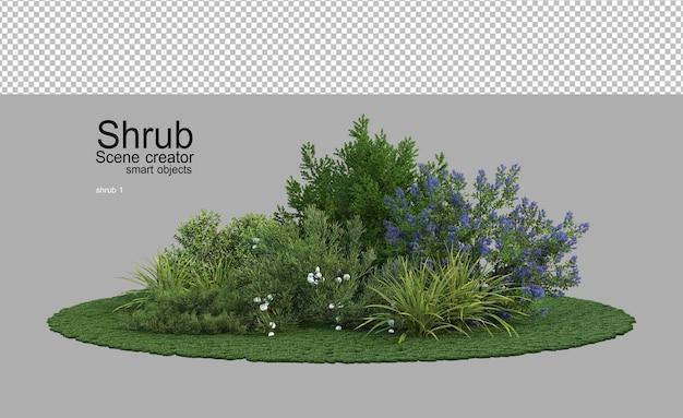 Muitos arbustos e plantas com flores em um pequeno jardim