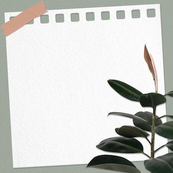 Nota de papel psd com planta de borracha