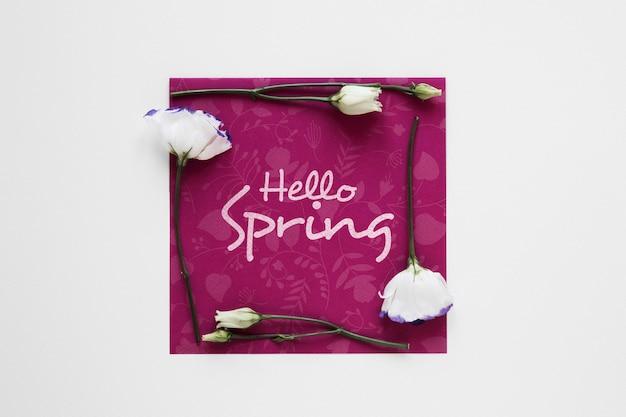Olá primavera cartão