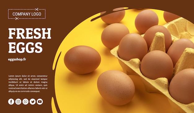 Ovos de galinha marrons em caixa de papelão