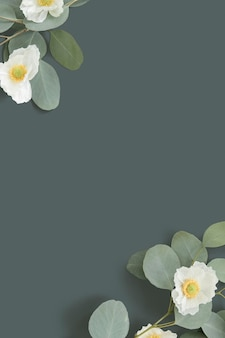 Papoula branca com fundo de folhas de eucalipto