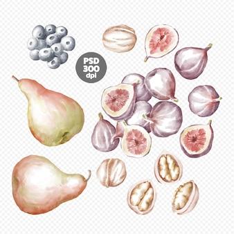Peras, figos, nozes e mirtilos clipart desenhado à mão
