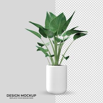 Planta de renderização na decoração do modelo 3d frontal
