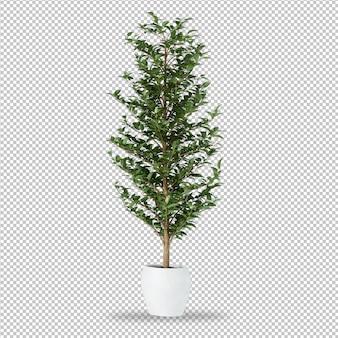 Planta em vaso em renderização em 3d