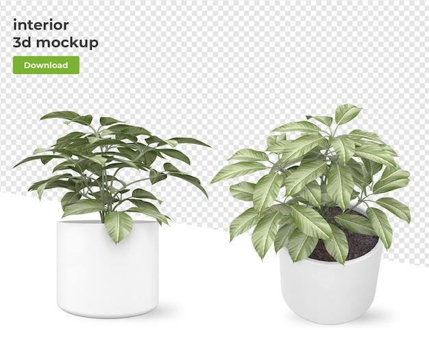 Planta em vaso para renderizar desenhos isolados