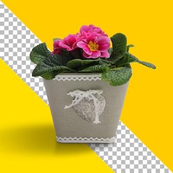 Planta fresca isolada em caixa de concreto