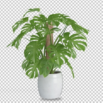 Planta isométrica em renderização 3d