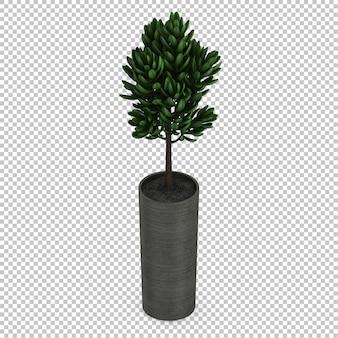 Planta isométrica