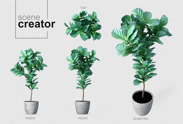 Planta no criador da cena do pote