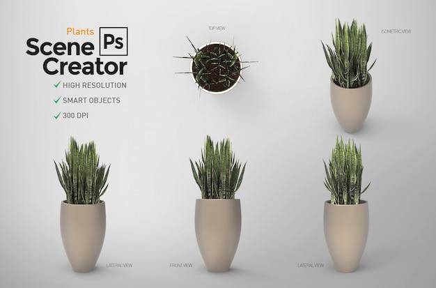 Plantas. criador de cena. 3d