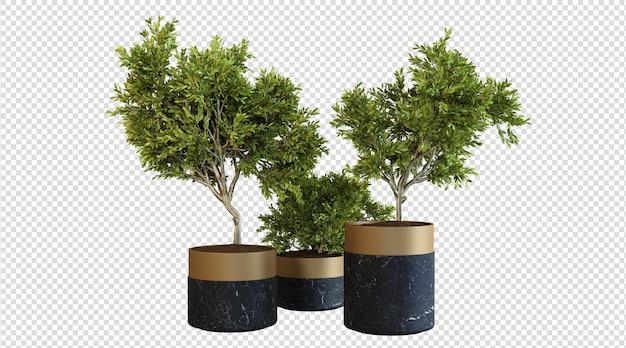 Plantas da casa em vaso de mármore preto renderização em 3d