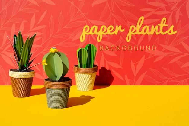 Plantas de cactos de papel tropical com vasos