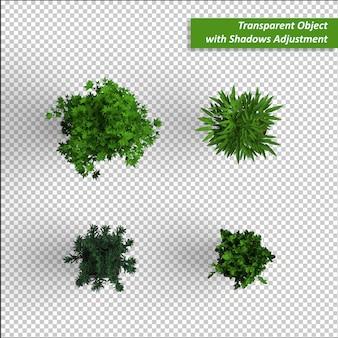 Plantas de objetos transparentes
