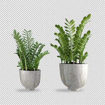 Plantas em renderização em 3d