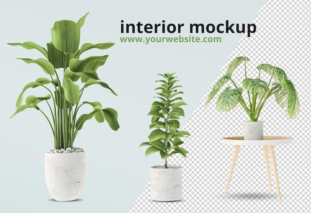 Plantas em vaso em maquete de renderização 3d