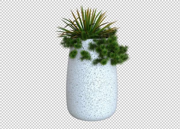 Plantas em vasos brancos