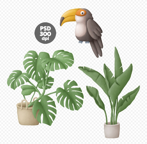 Plantas em vasos e ilustrações digitais desenhadas à mão de tucano