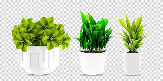 Plantas em vasos em design renderizado 3d
