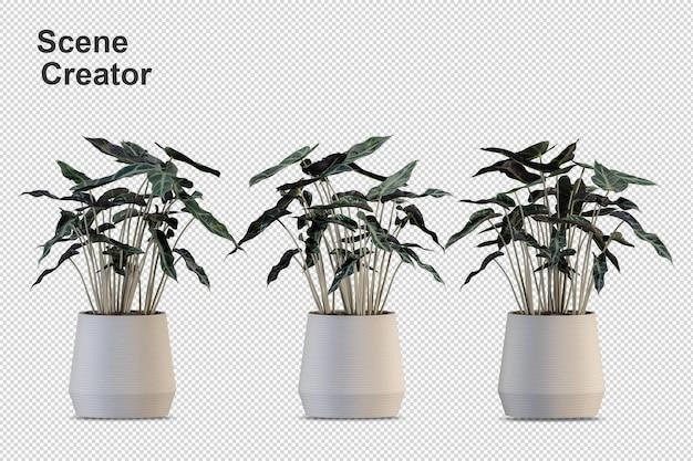 Plantas em vasos em renderização 3d isoladas