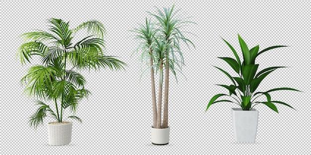 Plantas em vasos em renderização em 3d