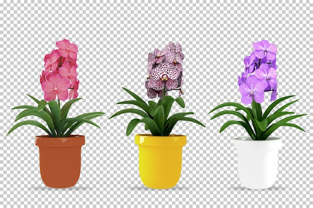 Plantas isométricas em vaso renderização 3d