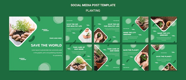 Plante árvores para uma postagem melhor na mídia social