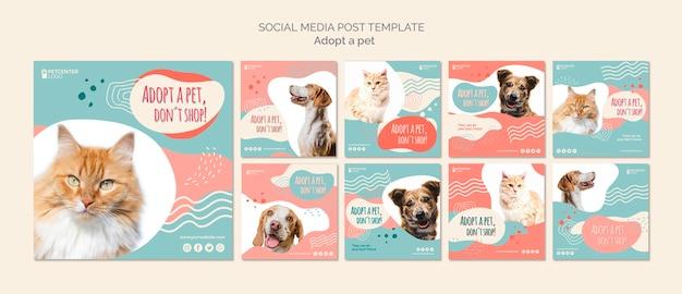 Post de mídia social de adoção de animais