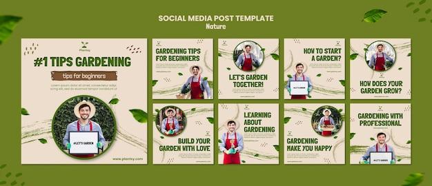 Postagem de dicas de jardinagem na mídia social